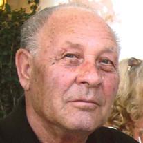 Alfeo Nunzio DiLoreto