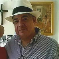 Pilar Albert Espinoza