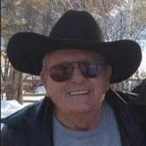 Harold E Burrows