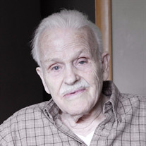 Albert V. Laraway