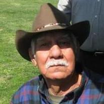 Salvador Garza Jr.