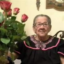 Elva  M.  Perez