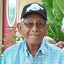 Luis Verastegui Garcia
