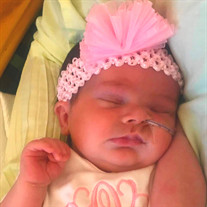 Gracie Evelyn Carter