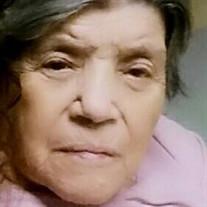 Elena Santana Moreno