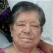 Maria Guadalupe Vela