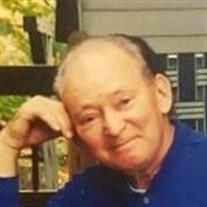 Mr. David J. Baldasaro