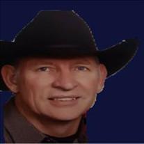 Ronald Lynn Wheeler