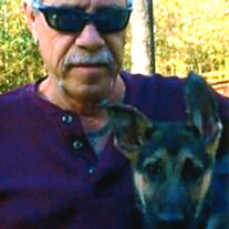 Mr. Charles Thomas Stein Jr.
