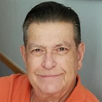 Mr. Philip A. Saporito, Sr.