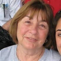 Patricia Ann Bocchino