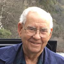 Joel Dean Golbek