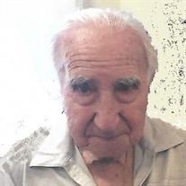 Mr. Angelo J. Misuraca Jr
