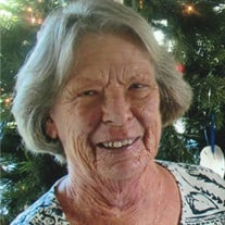 Nancy Sue  Lingeman