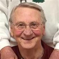 Mr. David Garrison Franks Jr.