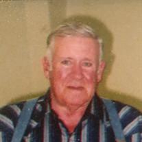 Robert L Ray