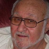 Mr Richard L Sikula
