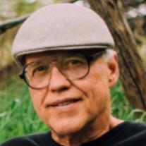 Steven A. Ludi