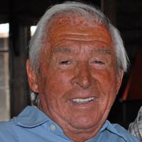 Dr. P. Robert Pax