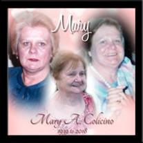 Mary Colicino