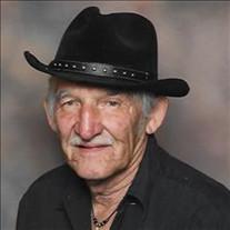 Donald P Romero