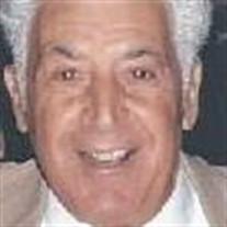 Patrick C. Varcasia