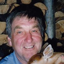 George William Stofan