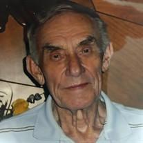Gerhard A. Meier