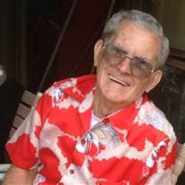 Alfred L.  De Rego Jr.