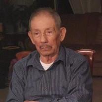 Mr. Manuel Pineda Covarrubias
