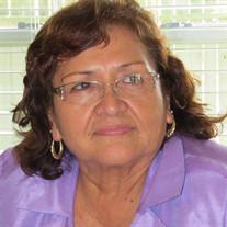 Guadalupe M Minor