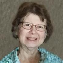 Sue L Cook