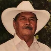Robert Acedo Fernandez