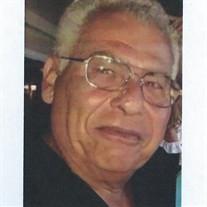 Nicholas W. Sandone Jr.