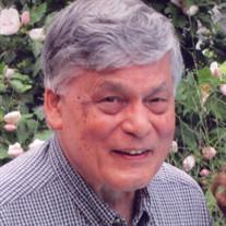 James Ellis Miyagawa