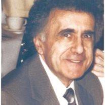 Mr. Salvatore M. DeStefano