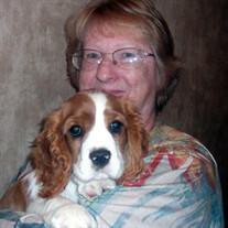 Patricia  Ann Meyers