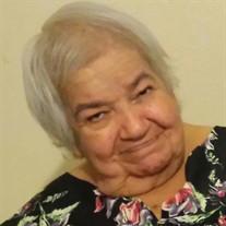 Lidia Segoviano Camarena