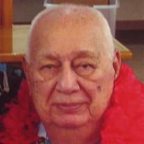 Allan Davenport (Lebanon)