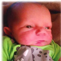 Timothy  Roger Douglas Bryant, 12 days old, Collinwood, TN
