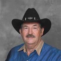 Robert Lewis Spiker