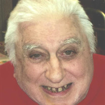 Mr. Frank R. DiSalvatore Jr.