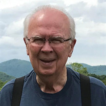 Mr. Frank Theodore  Horn