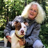 Paula Ann Springhart