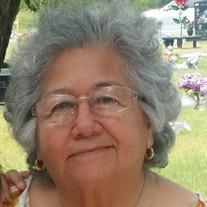 Carmen S.  Kocurek