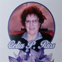 Celia P. Rios