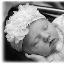 Blaire Rose Collins, 1 day, Collinwood, TN