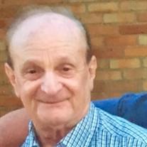 Michael J Ritchie