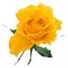 Rita May Roberts